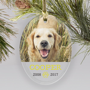 Personalized Pet Photo Memorial Glass Ornament | Pet Memorial Ornaments