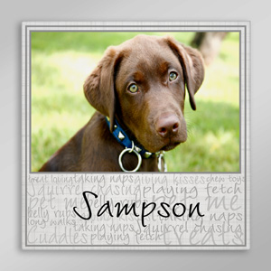 Personalized Dog Characteristics Wall Canvas | Canvas Pet Portraits