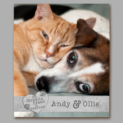 Personalized My Favorite Breed Photo Canvas | Pet Photos On Canvas