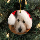 Picture Perfect Pet Photo Ornament U441010