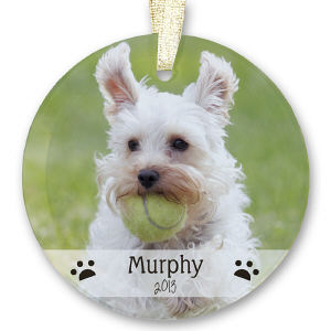 Pet Photo Glass Ornament