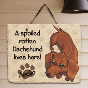 Personalized Dachshund Spoiled Here Slate Plaque