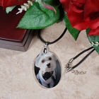 Picture Perfect Pet Photo Crystal Pendant Necklace