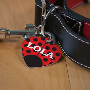 Personalized Lady Bug Pet Tag