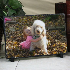 Picture Perfect Pet Photo Stone Keepsake