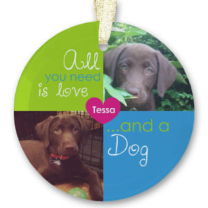 Personalized Pet Photo Collage Beveled Glass Ornament U69959