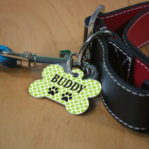 Personalized Green Circles Dog Bone Pet Tag | Personalized Dog Tags For Pets