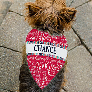 Personalized Dog Doodle Pet Bandanna | Personalized Dog Bandanna