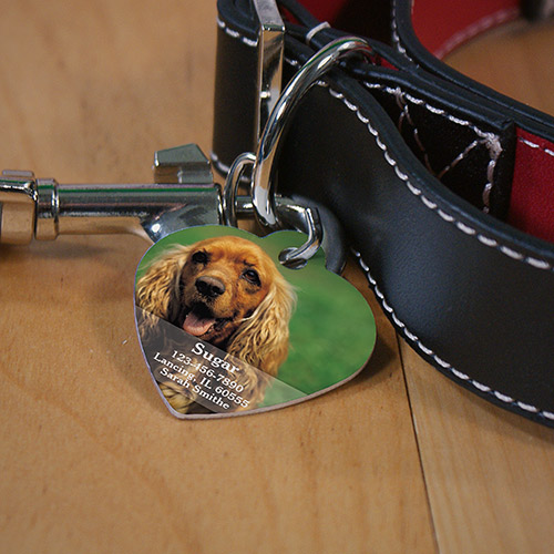Personalized Name and Photo Heart Pet Tag | Personalized Pet Tags