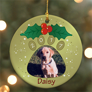 Personalized Ceramic Pet Photo Ornament U382010