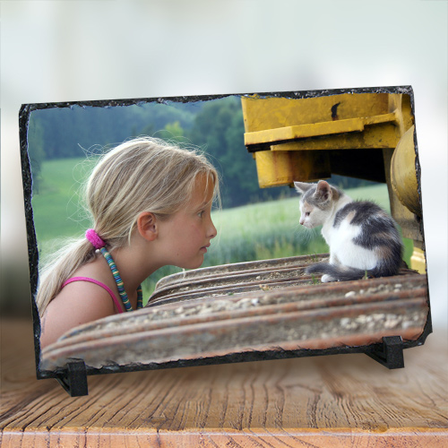 Picture Perfect Pet Photo Stone Keepsake U386567