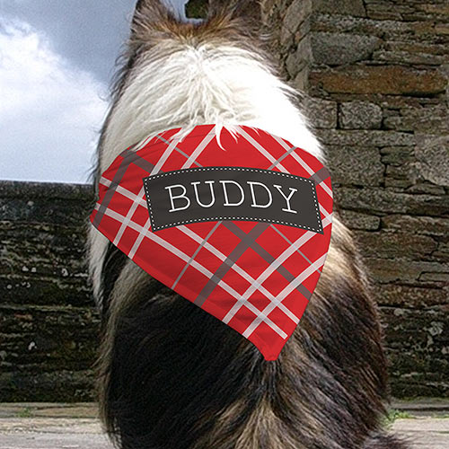 Personalized Plaid Pet Bandana