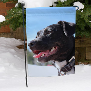 Picture Perfect Pet Photo Garden Flag