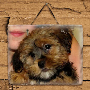 Picture Perfect Personalized Horizontal Slate Plaque 63114737