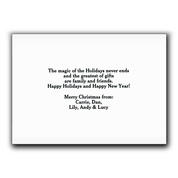 Our First Christmas as Mr. and Mrs.  Holiday Cards 1980010