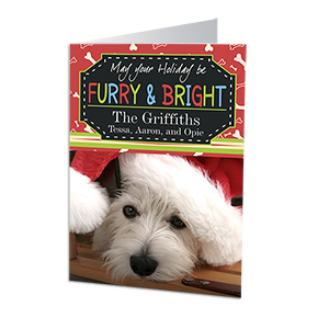 Furry and Bright Personalized Holiday Cards