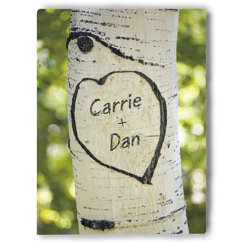 Sitting In A Tree Photo Canvas Wall Art