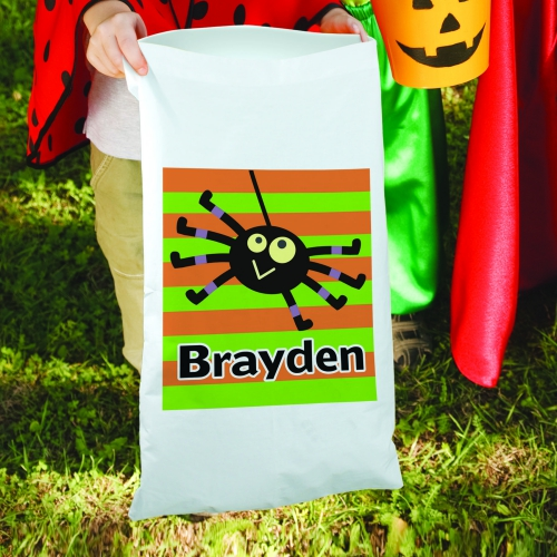 Halloween Boy Spider Candy Sack 83096680