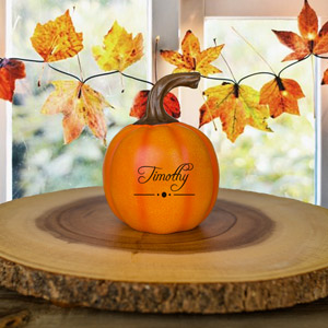 Personalized Trick or Treat Small Pumpkin | Personalized Pumpkins
