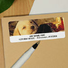 Labrador Puppy Personalized Photo Address Labels