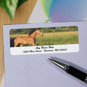 Horse Personalized Photo Address Labels