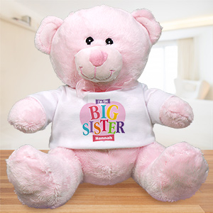 Big Sister Heart Plush Teddy Bear | Big Sister Gifts