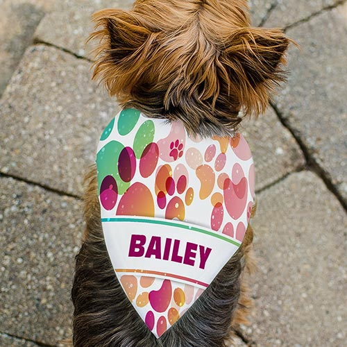 Personalized Paw Prints Pet Bandana | Personalized Dog Bandana
