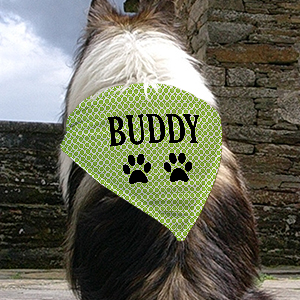 Personalized Green Circles Pet Bandana | Personalized Dog Bandanas