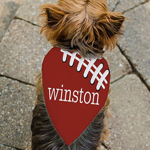 Personalized Sports Pet Bandana | Personalized Pet Bandanas