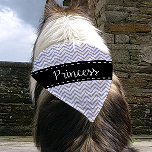 Personalized Chevron Pet Bandana | Personalized Pet Bandana