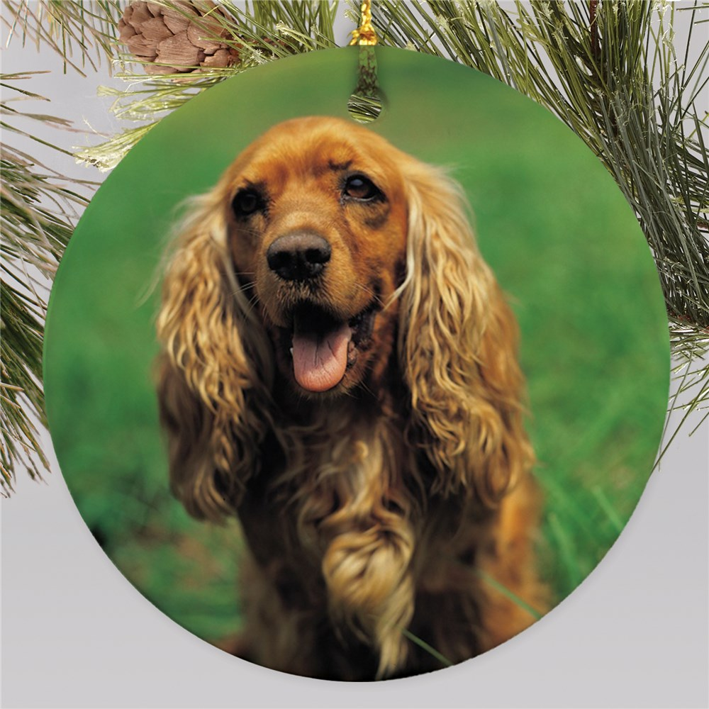 Picture Perfect Pet Photo Ornament | Personalized Pet Ornaments