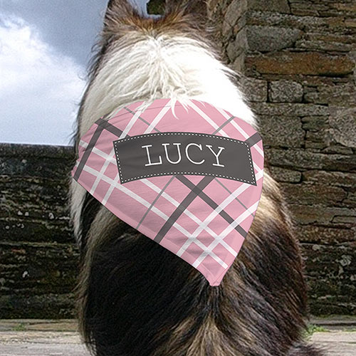 Personalized Plaid Pet Bandana U990952