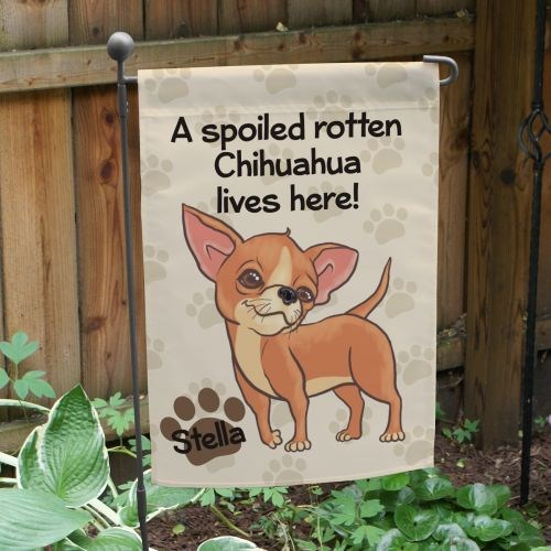 Personalized Chihuahua Spoiled Here Garden Flag 8306641CH2