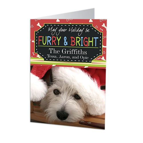 Furry and Bright Personalized Holiday Cards 1979910