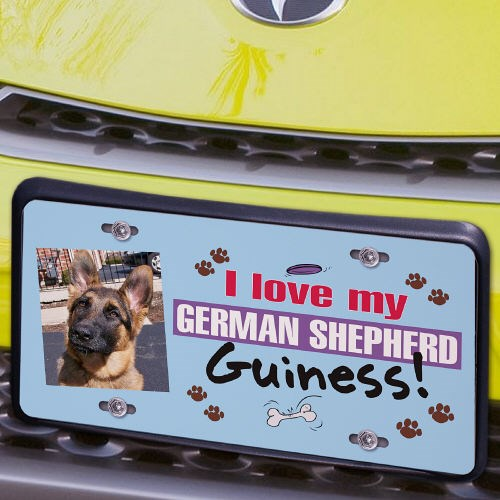 I Love My Dog Photo License Plate